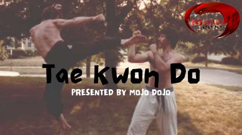 TAE KWON DO now offered at Good Vibes Movement
